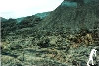 Lanzarote Lava